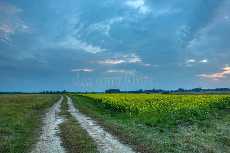 Campo da estrada de terra e da violação e nuvens do nivelamento fotos de stock