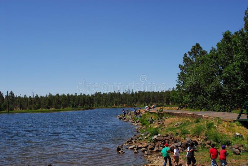 Campo da giuoco del lago forest immagine stock