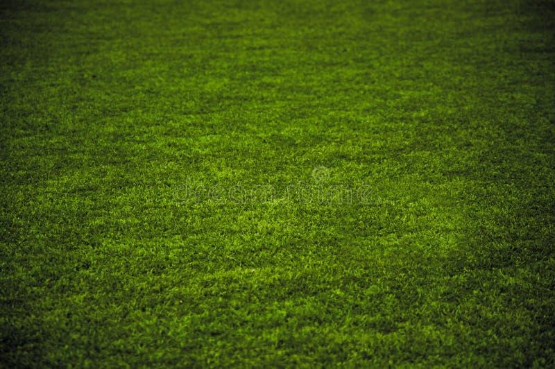 Campo da giuoco dell'erba fotografia stock