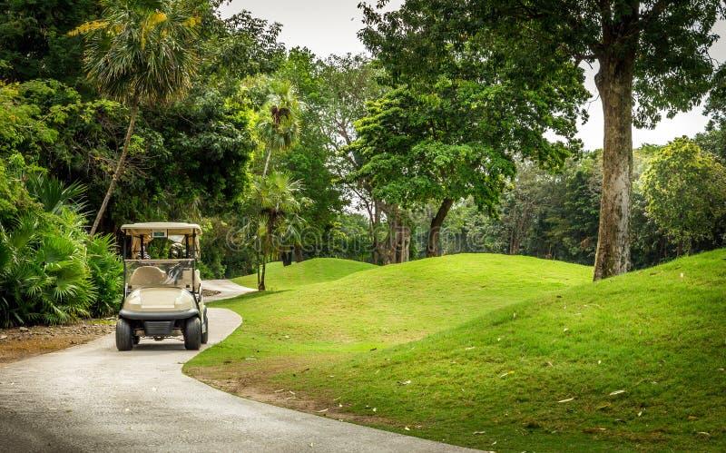 Campo da golf e golfcart fotografia stock libera da diritti