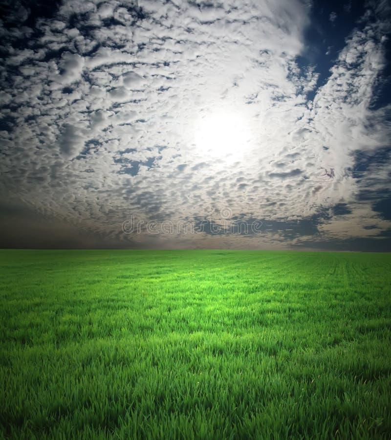 Campo da grama verde e do céu tormentoso fotos de stock royalty free