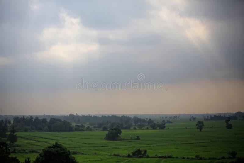 Campo da paisagem fotografia de stock royalty free