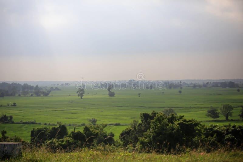 Campo da paisagem fotografia de stock