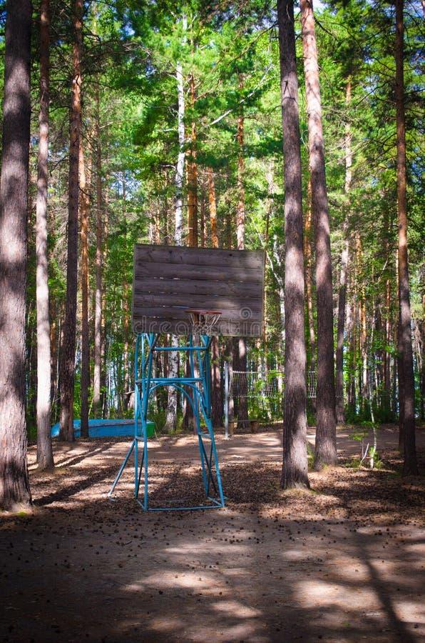 Download Campo Da Pallacanestro Anziano In Un'abetaia Immagine Stock - Immagine di verde, campo: 56891663