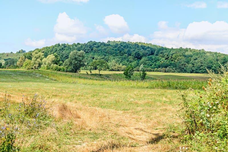 Campo da região Horezu com montes, florestas e fileds, soma fotos de stock royalty free