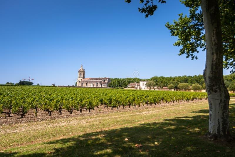 Campo da uva e igreja velha atrás. Paisagem na região do Bordéus imagens de stock royalty free