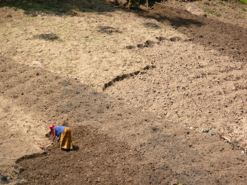 Campo de azada de la mujer burundesa foto de archivo