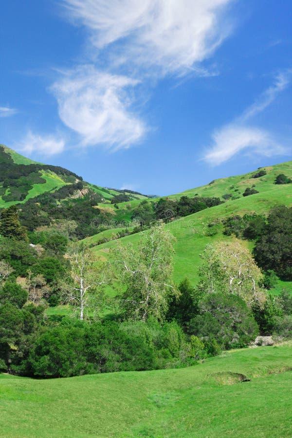 Campo de California imagen de archivo
