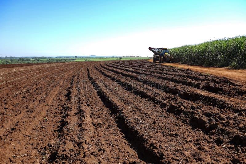 Campo de cosecha mecánico de la caña de azúcar en la puesta del sol en el sao Paulo Brazil - tractor en el camino de tierra entre imagenes de archivo