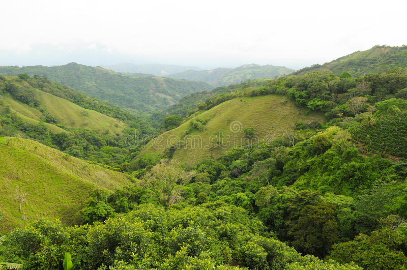 Campo de Costa Rica imagem de stock