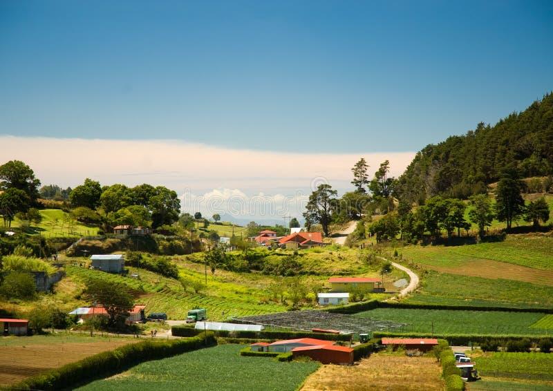 Campo de Costa-Rica fotografia de stock royalty free