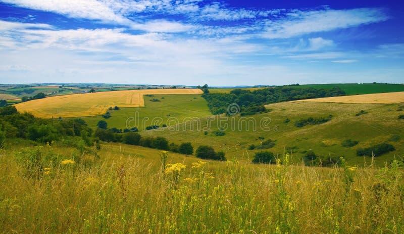 Campo de Dorset imágenes de archivo libres de regalías