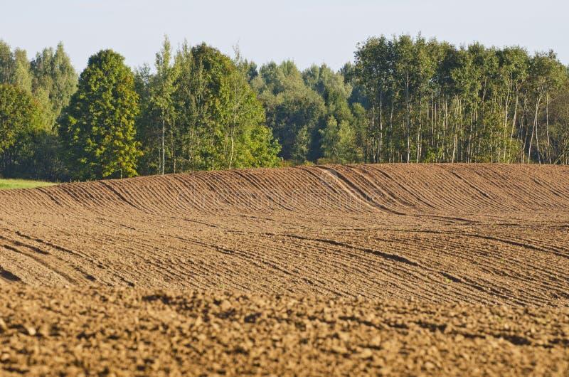 Campo de exploração agrícola arado da agricultura do tempo do outono foto de stock royalty free