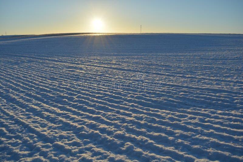 Campo de exploração agrícola da agricultura do tempo de inverno e luz solar da manhã foto de stock royalty free