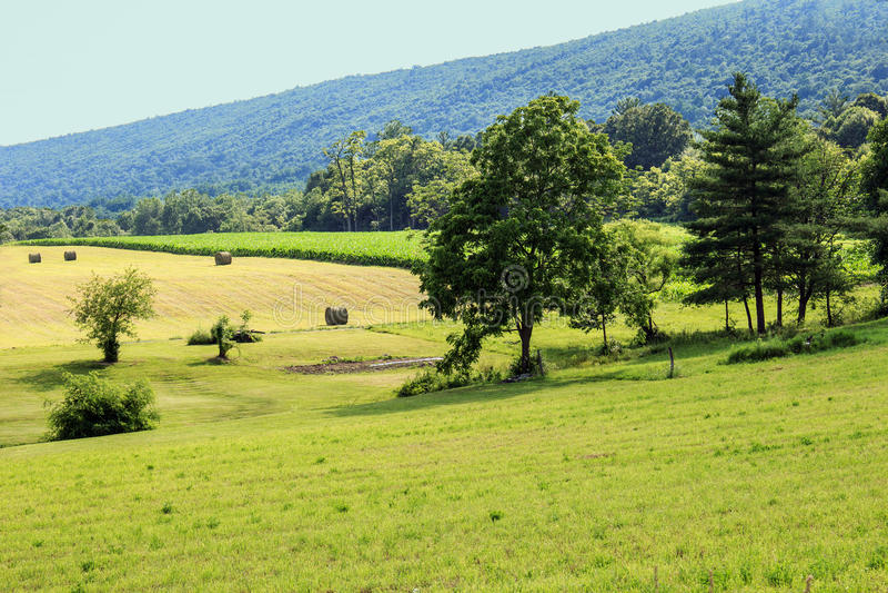 Campo de exploração agrícola e montanha Ridge fotografia de stock royalty free