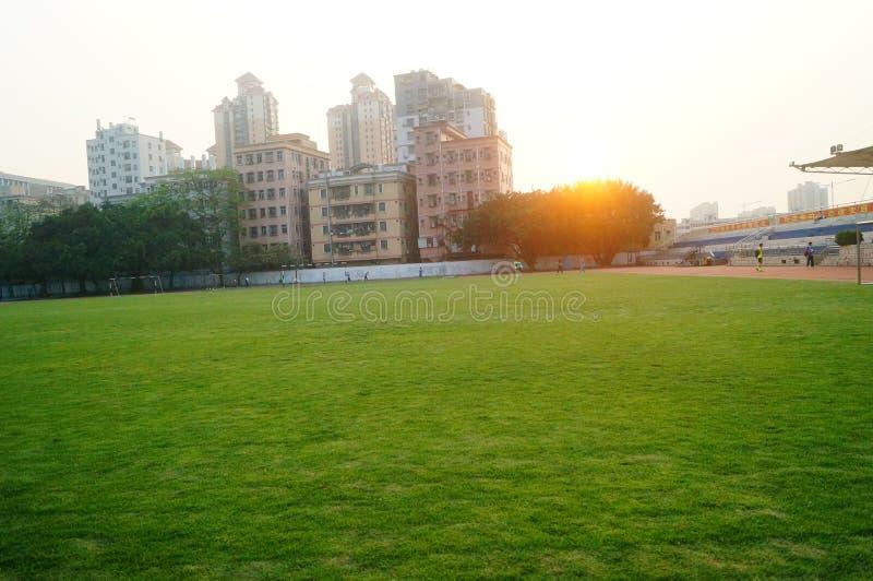 Campo de fútbol verde del césped, en la escuela foto de archivo libre de regalías