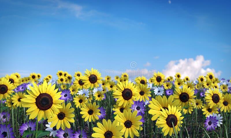 Campo de flor libre illustration