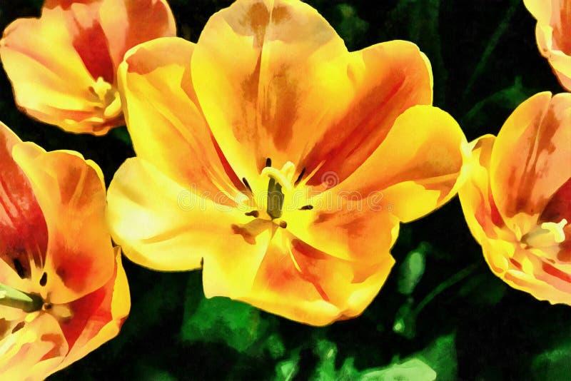 Campo de flor con los tulipanes coloridos Los trabajos en el estilo del wat stock de ilustración
