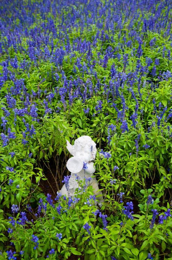 Campo de flores violeta na estação de mola com escultura do cupido fotografia de stock