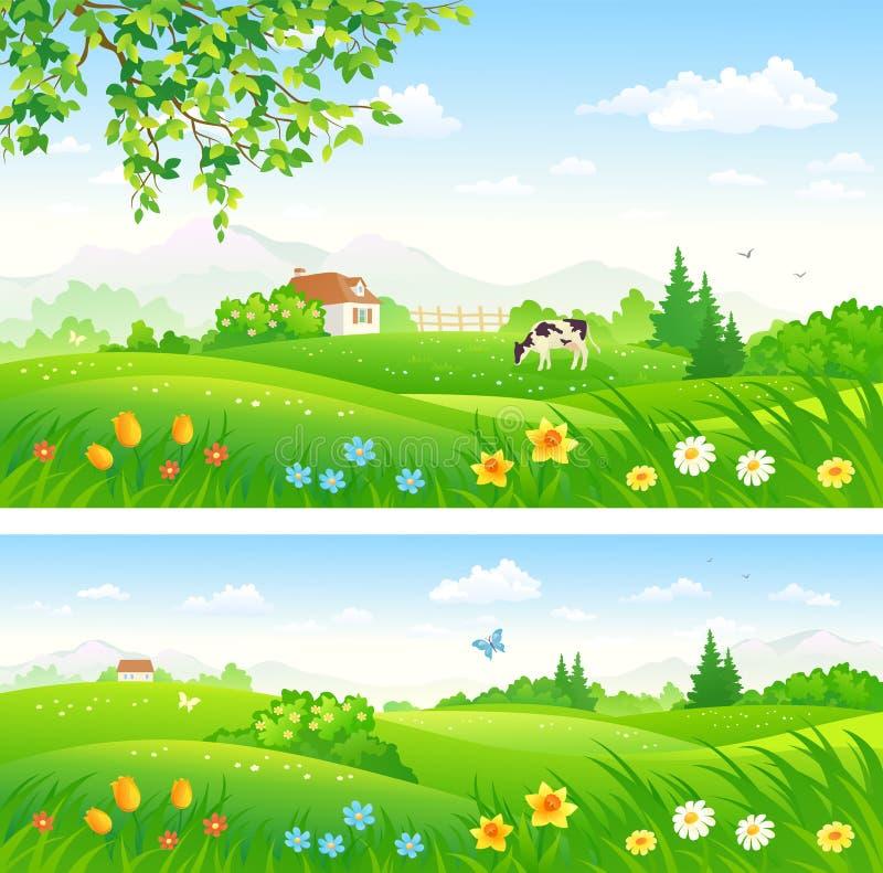 Campo de florescência da mola ilustração stock