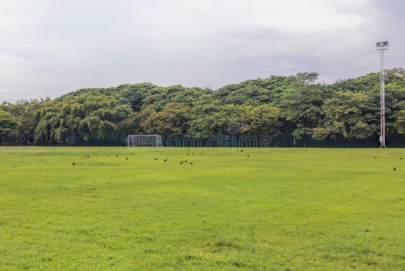 Campo de futebol em áreas rurais fotografia de stock