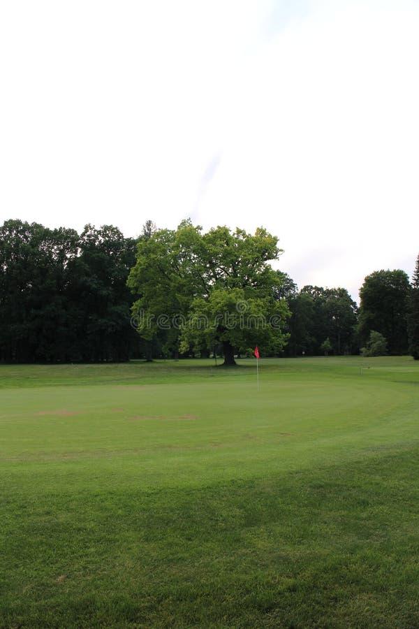 Campo de golf cerca del castillo de Kravare imagenes de archivo
