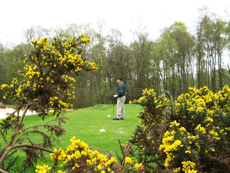 Campo de golf del castillo de Asford Kong, Irlanda foto de archivo libre de regalías