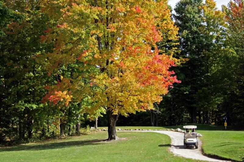 Campo de golf en caída foto de archivo libre de regalías