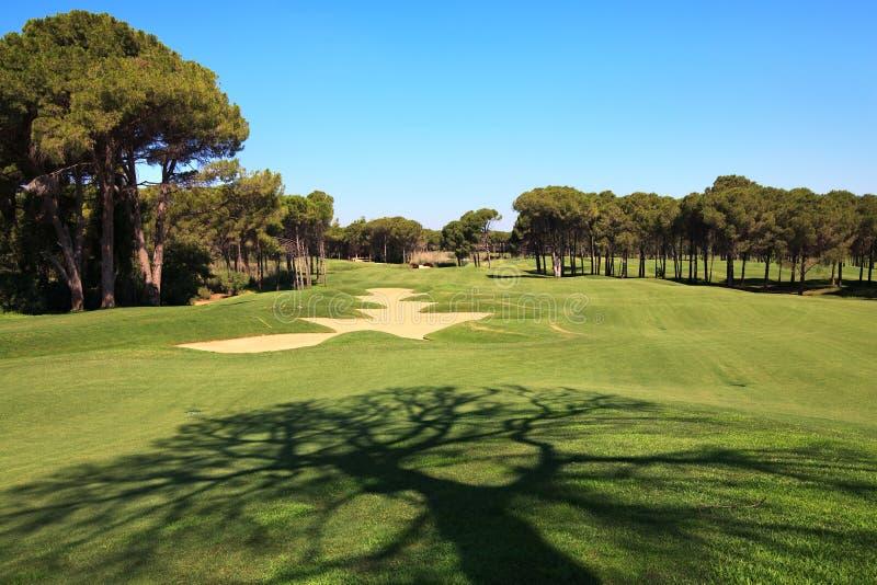 Campo de golfe com armadilha de areia. imagem de stock royalty free