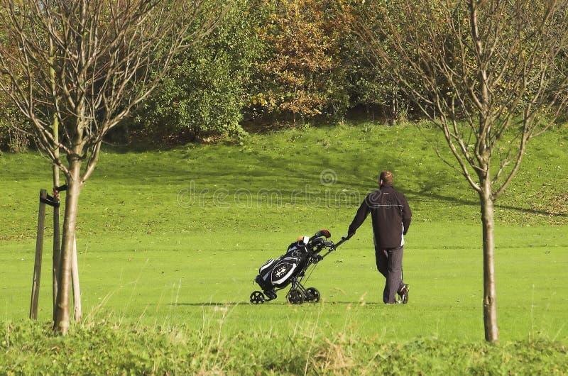 Campo de golfe com um jogador imagem de stock royalty free