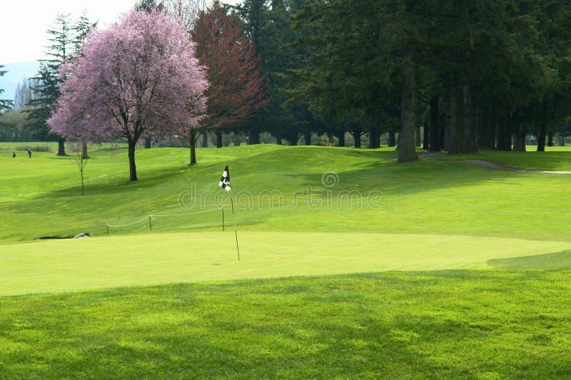 Campo de golfe que Golfing Canadá foto de stock