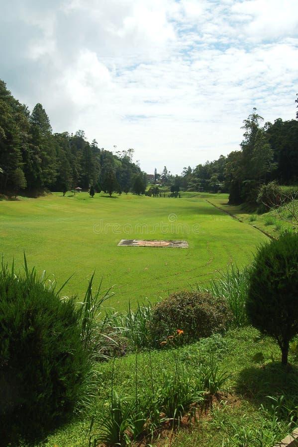 Campo de golfe sombrio imagens de stock