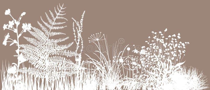 Campo de grama ilustração royalty free