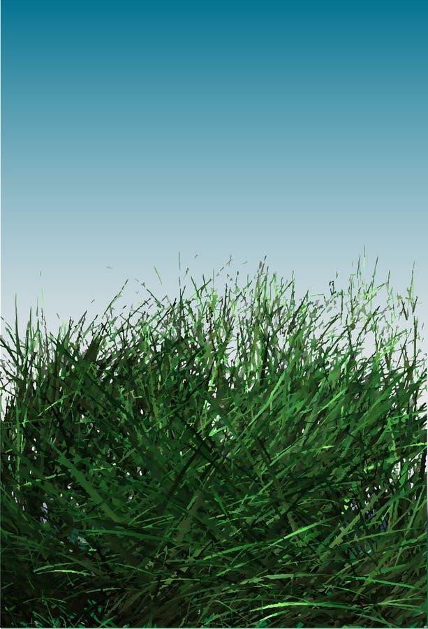 Campo de grama ilustração stock