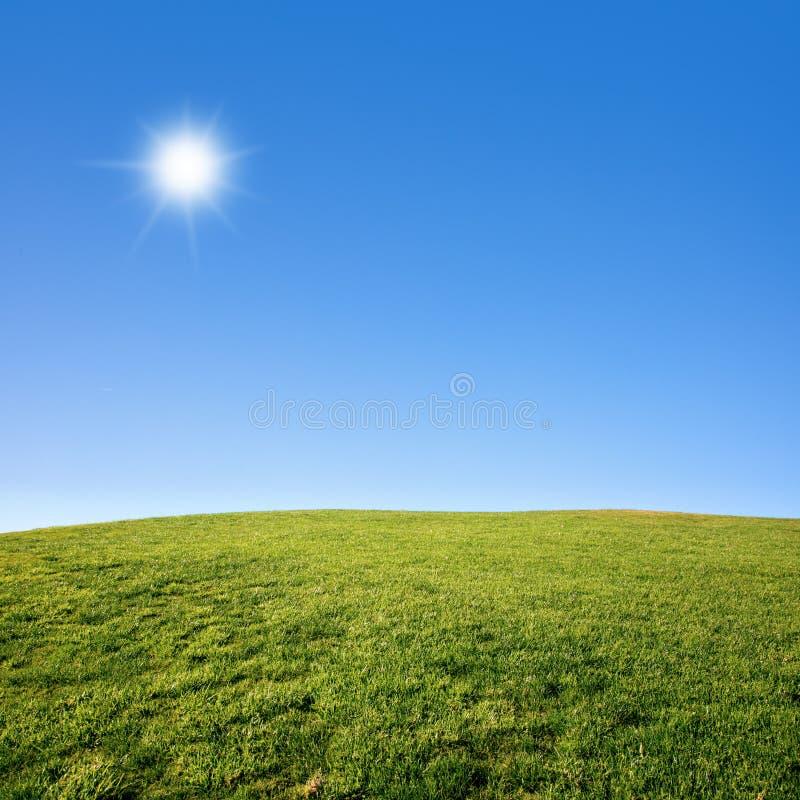 Campo de grama e céu azul imagem de stock