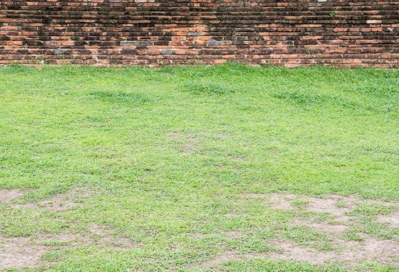 Campo de grama na frente da parede de tijolo velha fotos de stock