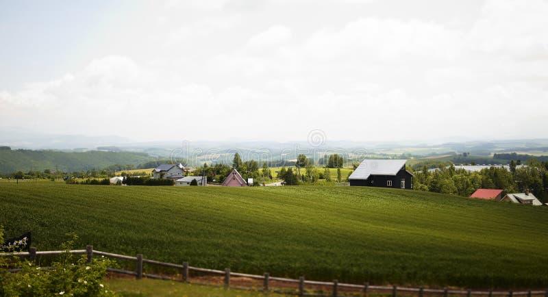 Campo de granja de Hokkaido fotos de archivo