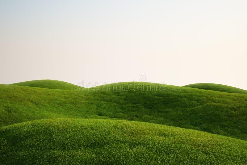 Campo de hierba ilustración del vector