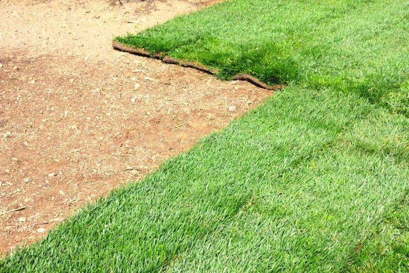Campo de hierba del césped foto de archivo