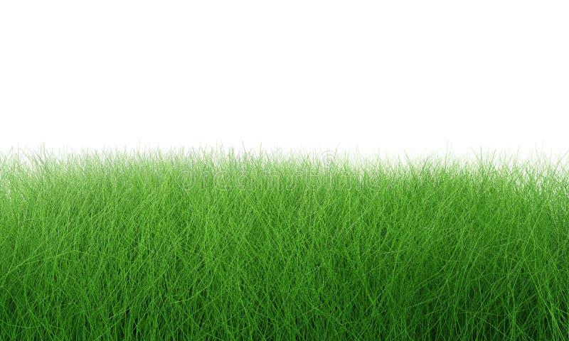 Campo de hierba verde aislado en blanco con la trayectoria de recortes Alfombra artificial de la hierba del c?sped para el fondo  imagen de archivo