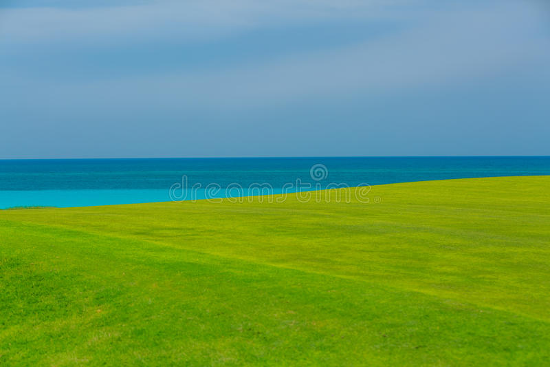 campo de hierba verde fresco magnífico contra fondo del océano tranquilo y del cielo azul imágenes de archivo libres de regalías