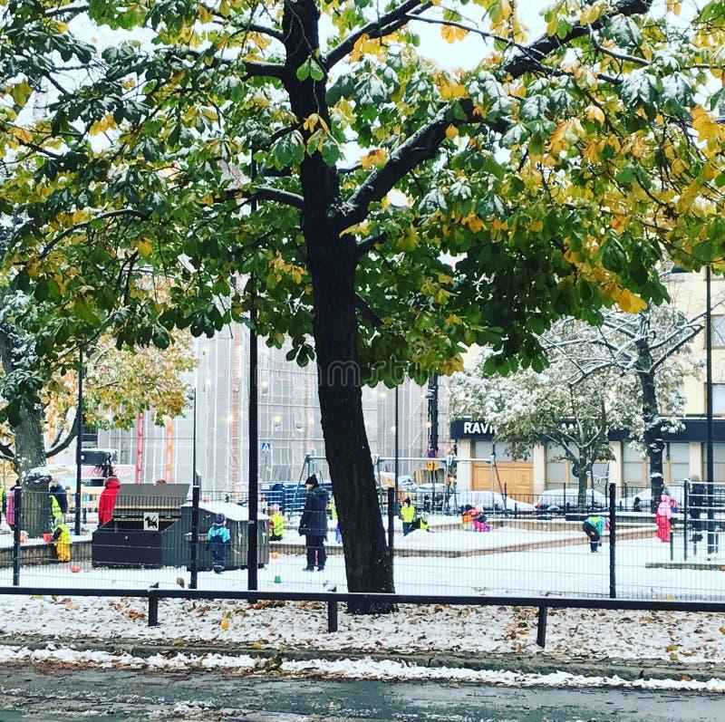 Campo de jogos em Finlandia no outono fotografia de stock