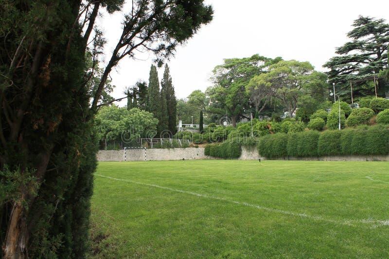 Campo de jogos para o futebol entre os ciprestes foto de stock royalty free