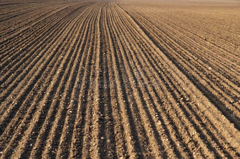 Campo de la agricultura del arado foto de archivo