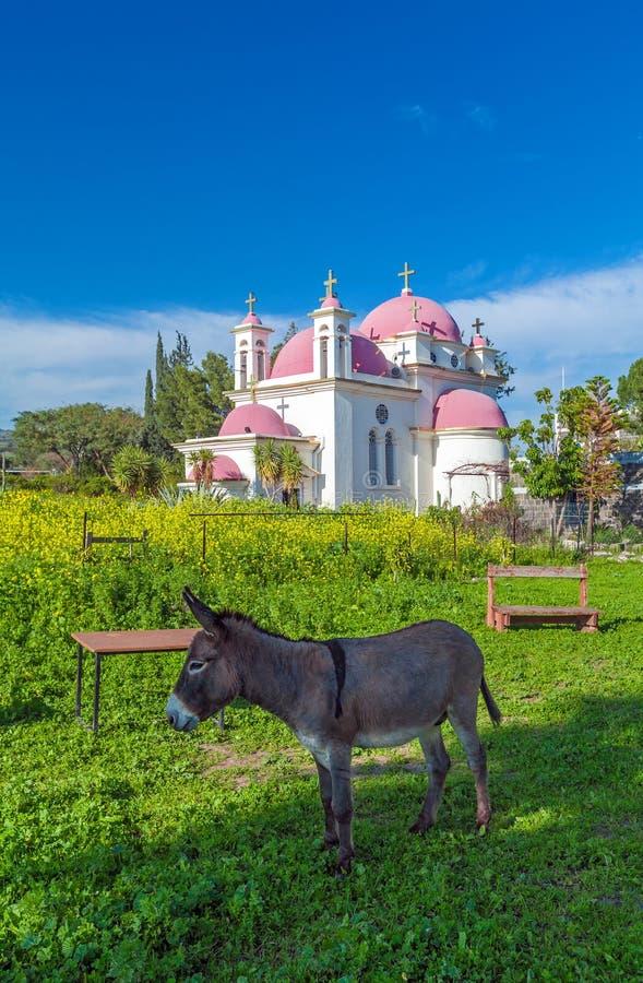 Campo de la iglesia ortodoxa y de la mostaza cerca del mar de Galilea foto de archivo