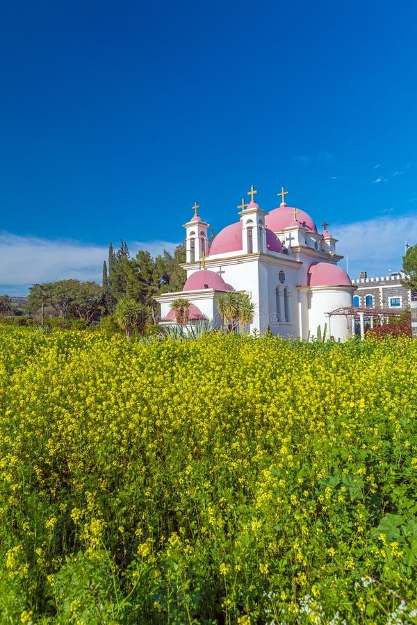 Campo de la iglesia ortodoxa y de la mostaza cerca del mar de Galilea imagen de archivo libre de regalías