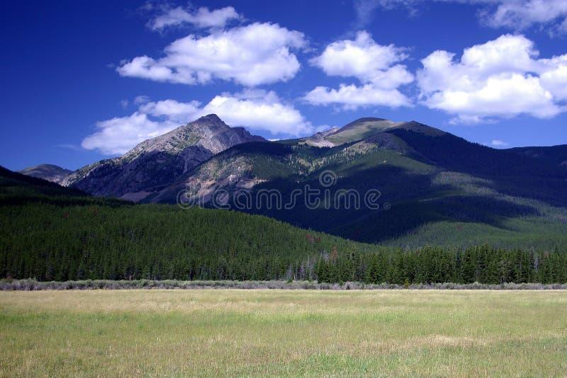 Campo de la montaña rocosa fotografía de archivo libre de regalías