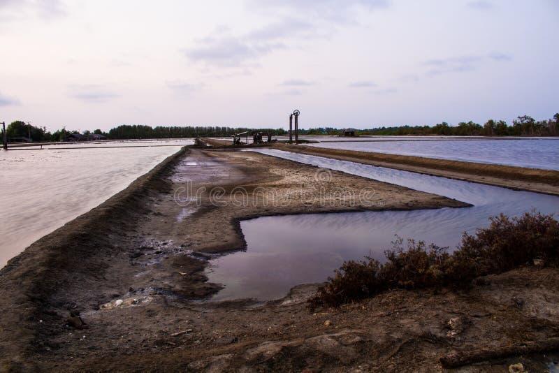 Campo de la producción de sal en Tailandia imagenes de archivo