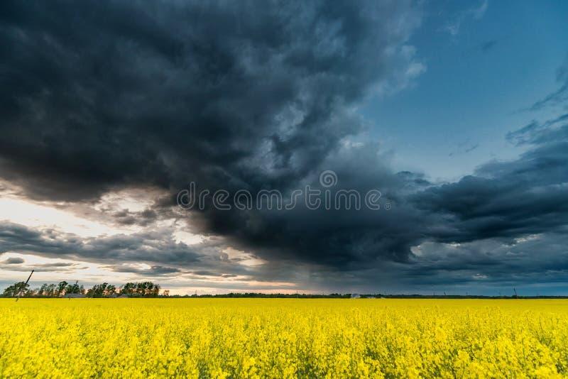 Campo de la rabina con el cielo nublado tempestuoso en fondo imagen de archivo