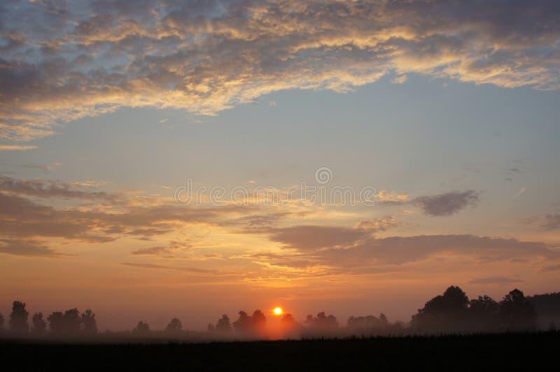 Campo de la salida del sol con la niebla foto de archivo libre de regalías